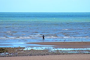 Man Fishing on Beach