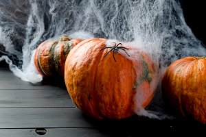 Autumn pumpkins, web and spider in b