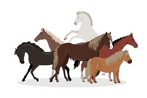 Horse Conceptual Flat Style Vector