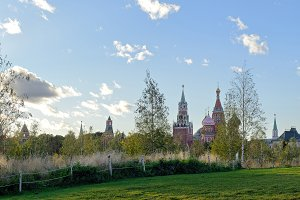 Field and trees with Moscow Kremlin
