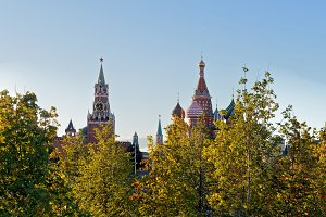 Trees with the Moscow Kremlin