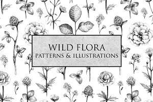 Wild flora. Drawings and patterns