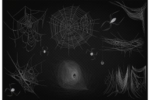 Realistic cobweb spiderweb set.