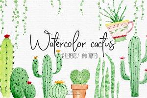 Watercolor cactus clipart