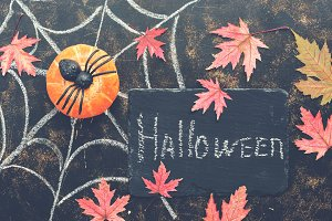 Halloween, pumpkin, spider
