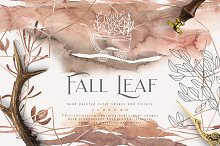 Fall Leaf Collection