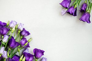 Beautiful Bouquet of Purple Eustoma