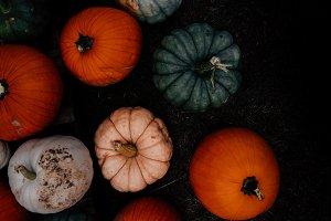 Fall Pumpkins Dark & Moody