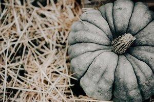 Fall Pumpkin with Hay