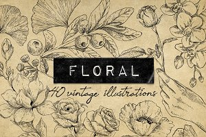 40 Vintage Floral Illustrations