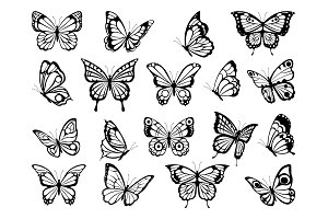 Silhouettes of butterflies. Black