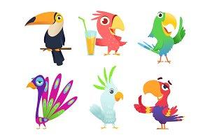 Tropical parrots characters