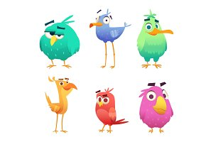 Cartoon funny birds. Faces of cute