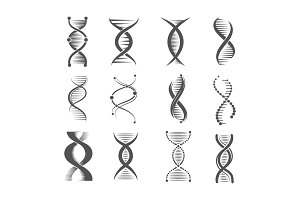 Dna spiral icons. Helix human