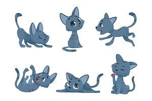 Little kittens. Cats domestic cute
