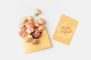 beautiful pink roses in envelope and