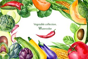 Сollection vegetables, watercolor