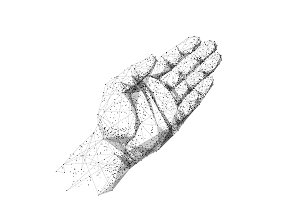 human hand or palm low poly