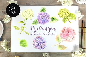 Watercolor Hydrangea Clip Art Set