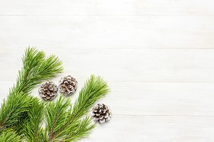 Christmas background pine branches