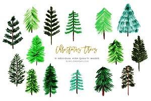 Conifers Trees clip art Christmas