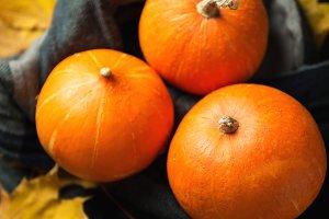 Several orange pumpkins and autumn l