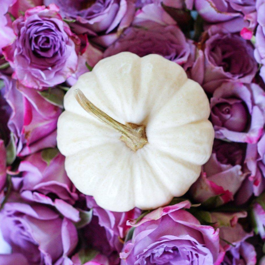 White Pumpkin And Purple Flowers Holiday Photos Creative Market