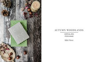 Autumn Woodlands | Vertical No 1