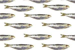 Anchovies Group Seamless Pattern