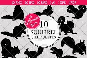 Squirrel silhouette vector graphics