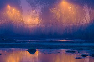 Misty promenade night lights