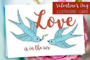 Swift love birds, Valentines day