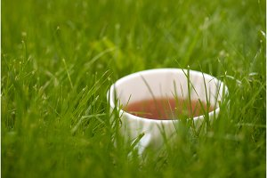 cup of tea on the grass lawn with