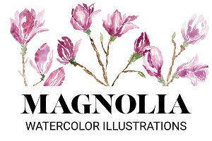 Magnolia: Watercolor Illustrations