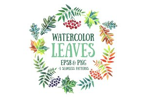 Watercolor leaves