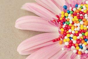 Wall Art Print, Pink Flower, Candy