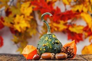 Still life autumn background