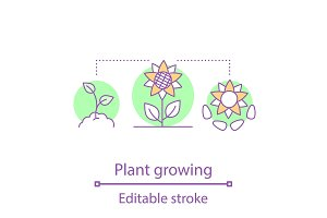 Plants growing concept icon
