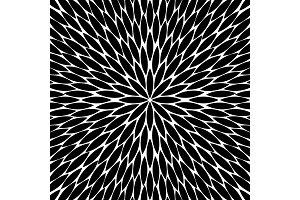 flowers pattern, chamomile, round