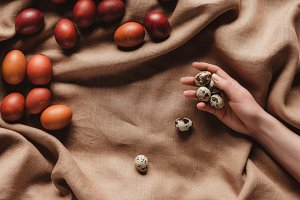 cropped view of hand with quail eggs