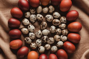 top view of easter quail eggs in cir