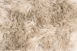 Sheep fur Natural sheepskin rug back
