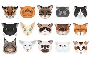 Vector cats heads icons set