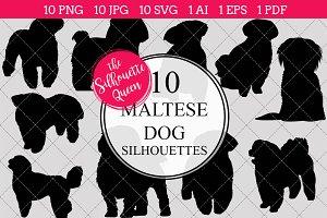 Maltese Dog silhouette vector