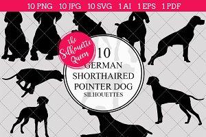 German Shorthaired Pointer Dog
