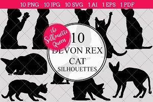 Devon Rex Cat silhouette vector