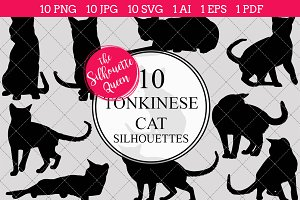 Tonkinese Cat silhouette vector