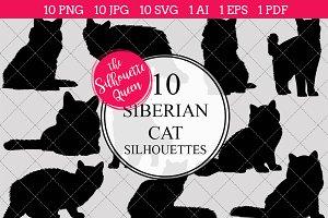 Siberian Cat silhouette vector