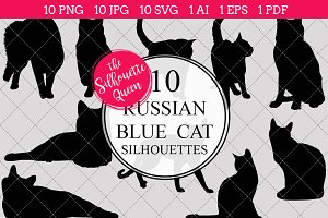 Russian Blue Cat silhouette vector