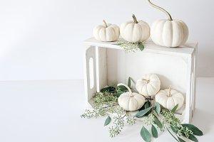 Pumpkin Crate 2 - Stock Photo